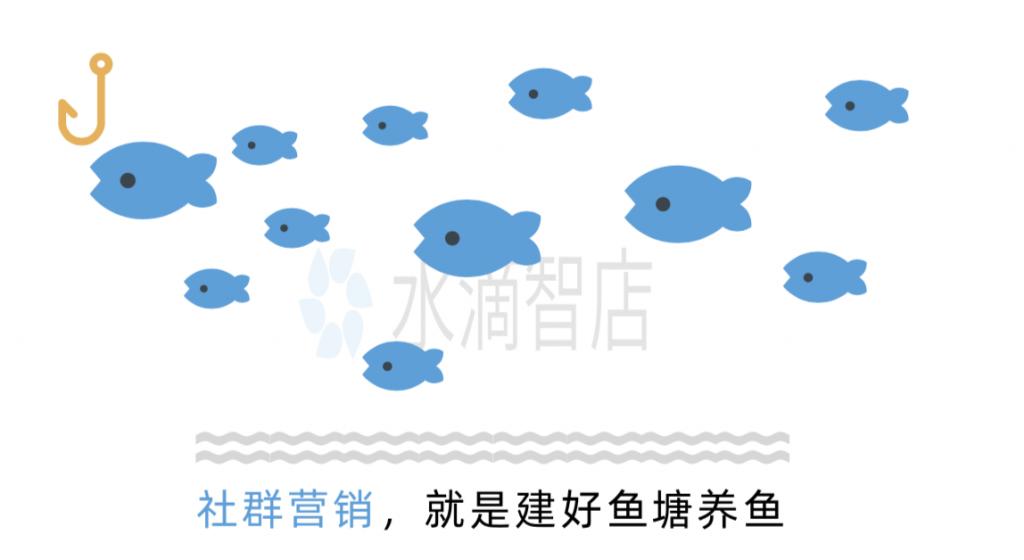 社群营销的鱼塘养鱼理论